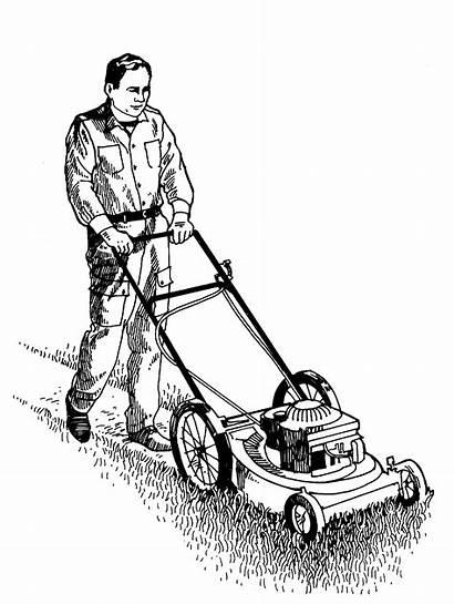 Lawn Mowing Clipart Grass Mower Clip Cutting