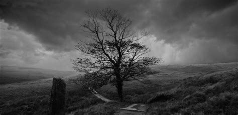 Ann Cleeves, Master of the Village Noir | Wuthering ...