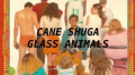 glass animals cane shuga  bit youtube