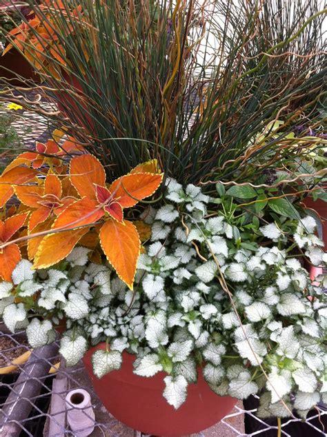 potted plant arrangements flower potted arrangement garden landscape pinterest