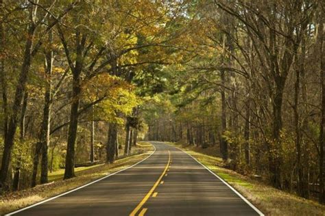 The 11 Best Backroads In Mississippi For A Scenic Drive