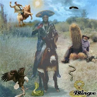 Funny Western Blingee Digital Fantasy Topics Editor