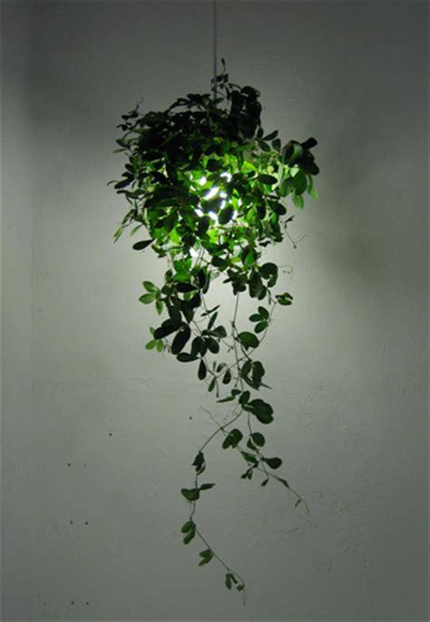 botanical lamp jjoo design