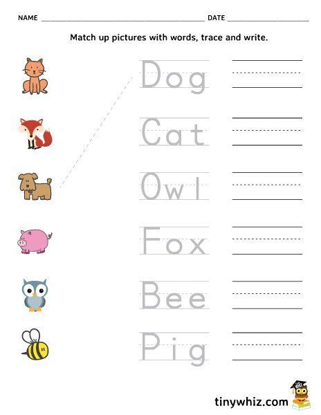 printable spelling worksheet match trace write