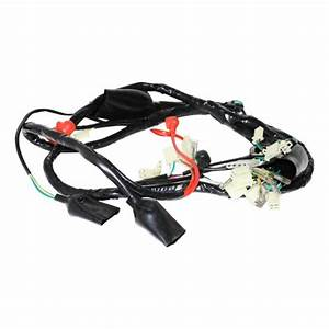 Scooter Wire Harness 150cc