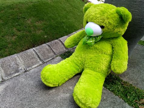 jual beruang teddy boneka jumbo besar hijau murah lucu di lapak boneka profesi wisuda ww one