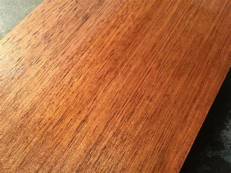 kenali   kayu nyatoh sebelum membelinya catkayunet