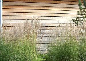 Gräser Für Garten : sichtschutz f r terrassen erste wichtige tipps ~ Lizthompson.info Haus und Dekorationen