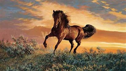 Horses Wild Horse Mustang Background Wallpapers Paintings