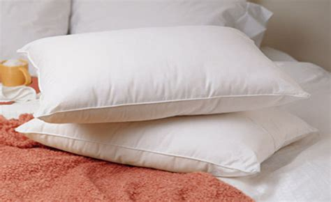 standard bed pillows standard size feather goose bed pillow set of 2