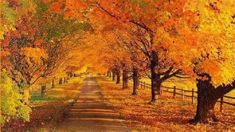 Beautiful Autumn Landscapes Wallpapers by 32 Autumn Wallpaper Landscapes On Wallpapersafari