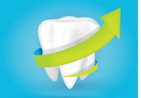 Wisdom tooth or third molar surgeries are performed by oral surgeons. How Much Does Wisdom Teeth Removal Without Insurance Cost ...