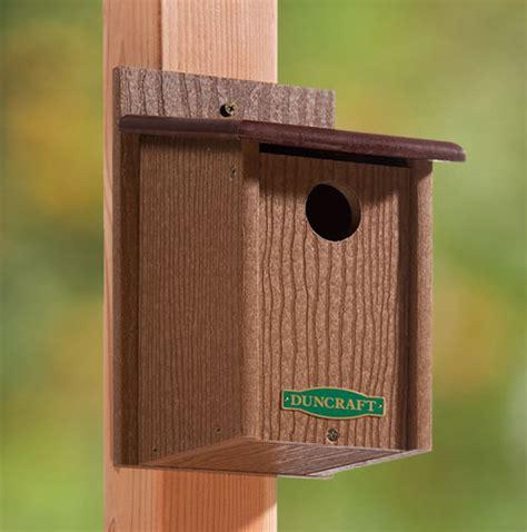 duncraft com duncraft 3003 eco friendly songbird house