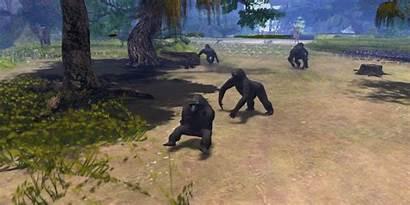 Wild Virunga Gorillas Opensim Mountain Beware Signs