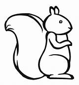 Squirrel Coloring Easy Clipart Outline Drawing Template Printable Cute Pages Pattern Sheets Simple Draw Chipmunk Clip Print Templates Cartoon Baby sketch template