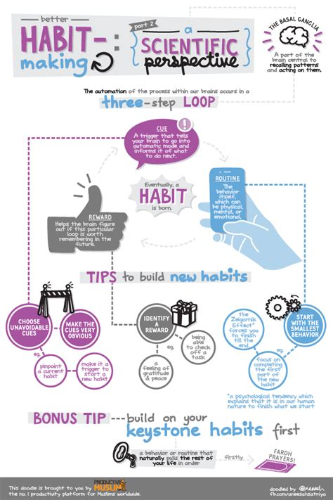 Know The Science Behind Habits Productivemuslim
