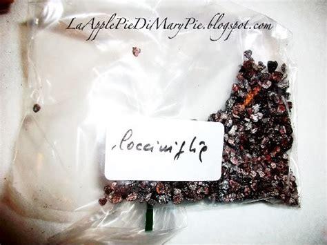 cocciniglia colorante alimentare e120 cocciniglia colorante naturale