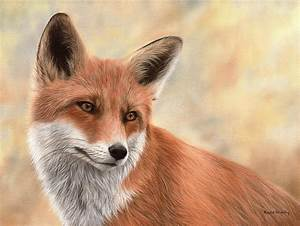 Red Fox Painting Painting by Rachel Stribbling