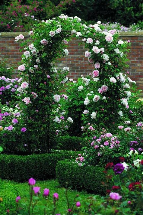 квітники на дачі 50 фото райських куточків ідеї декору