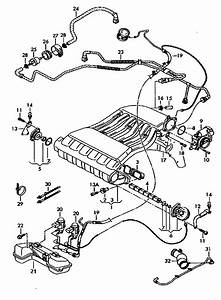 24v Vr6 Jetta Engine Diagram : what is this vac line ~ A.2002-acura-tl-radio.info Haus und Dekorationen