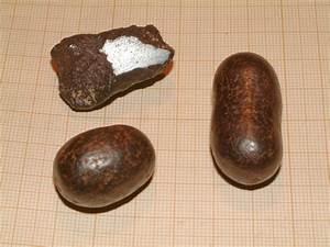 Comment Reconnaitre Un Hibiscus D Intérieur Ou D Extérieur : les pierres terrestres souvent confondues avec une m t orite ~ Dallasstarsshop.com Idées de Décoration