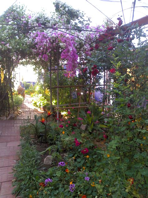 Eves Garden by S Garden Bed And Breakfast When You Want Something