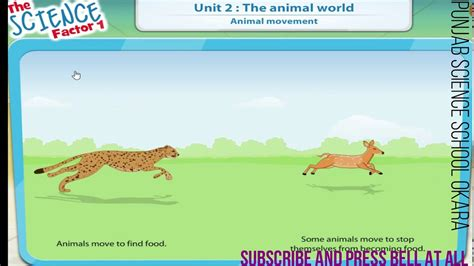 SCIENCE 1 UNIT 2 ANIMAL MOVEMENT YouTube
