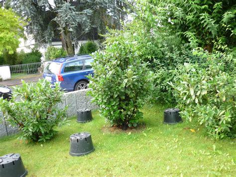 Sichtschutz Für Den Vorgarten