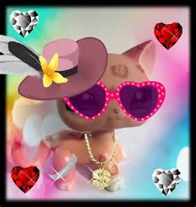 pet shop cats sopr cat littlest pet shop fan 35939289 fanpop