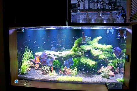 planted freshwater aquarium lighting orphek