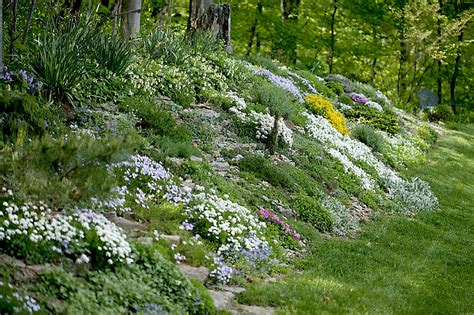 gardening on a hillside create a faux rock garden on a hillside or berm michigan gardening web articles