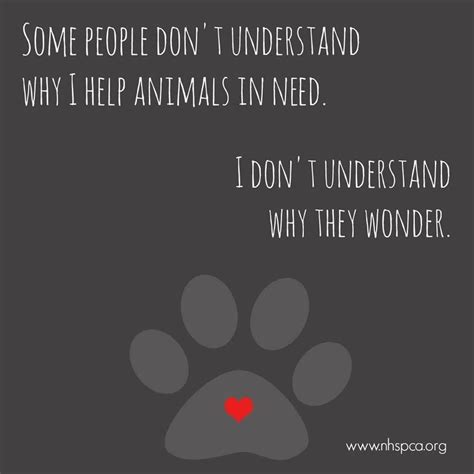 people dont understand    animals