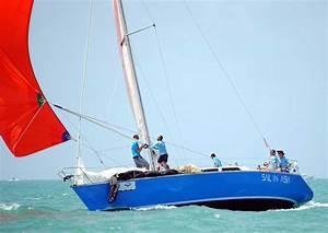 Pinocchio - 11m Racing Yacht - Racing Yachts