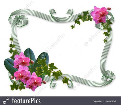 templates orchids  ivy wedding invitation border