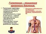 Лечение высокого пульса при низком давлении