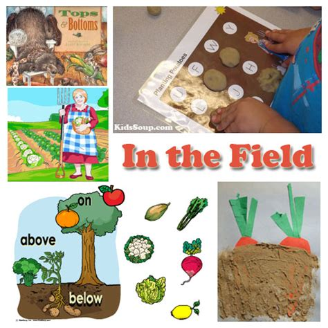 harvest and farm preschool activities and lessons 295 | In the Field activities KS