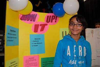 Science 5th Grade Fair Projects Boards Success