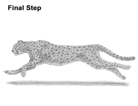 draw  cheetah running