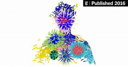 Immune System Gifs Educate Nytimes Confused Opinion