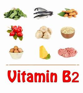 Top 10 Vitamin B2 Rich Foods You Should Include In Your Diet