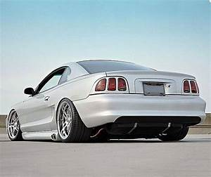 Mustangs | Pony car, Sn95 mustang, Mustang