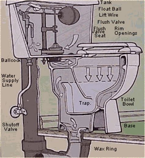 Tub Overflow Gasket Sizes by Flush Valve Wiring Diagram For Bathroom Blueprints For