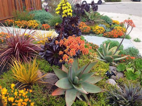 Drought Tolerant Landscapes. Storage Ideas For Bathroom Cleaning Products. Not Just Kitchen Ideas Death. Easter Holiday Ideas Europe. Wedding Ideas Jenga. Camping Invention Ideas. Bathroom Vanity Creative Ideas. Newest Curtain Ideas. Landscaping Ideas Low Budget