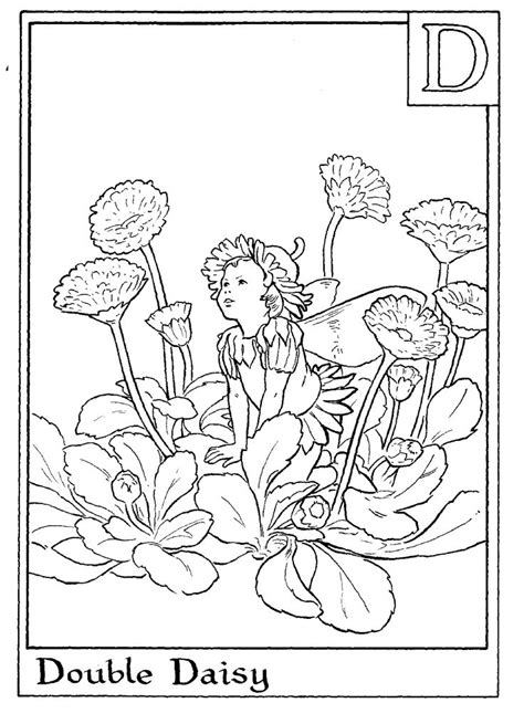 fairies  pinterest fairy coloring pages  dover sketch
