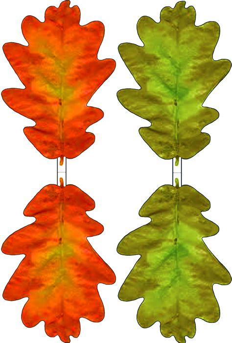 green  red paper oak leaf decoration rooftop post