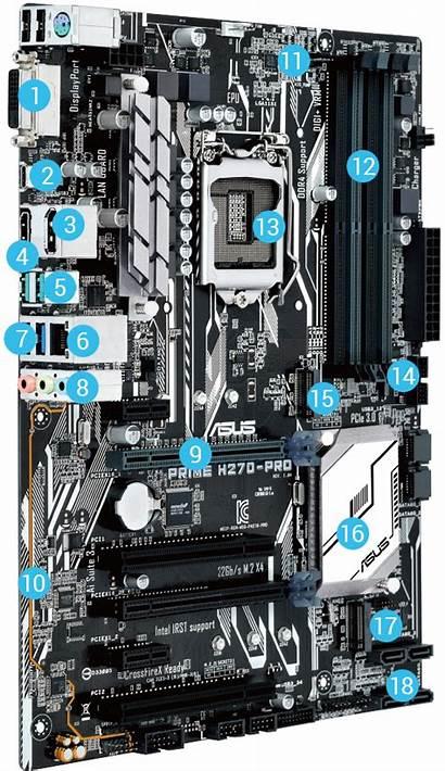 H270 Asus Prime Motherboard Motherboards Driver Global