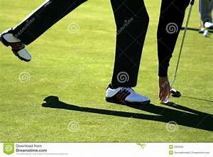 Putting Green - Golf Ball Putt Stock Photography - Image ...