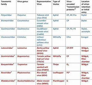 What is the name of 20 harmful microorganisms with the ...