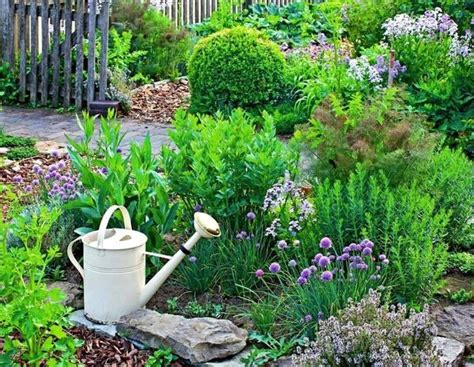 grow  herb garden design ideas  outdoors