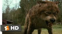 The Twilight Saga: New Moon (7/12) Movie CLIP - Jacob's ...